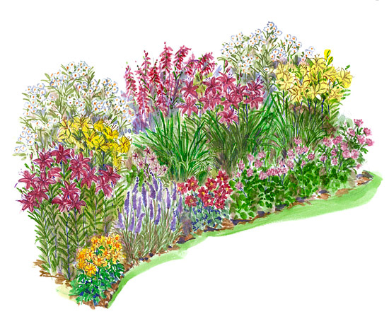Perennials – Garden Plans Zone 7