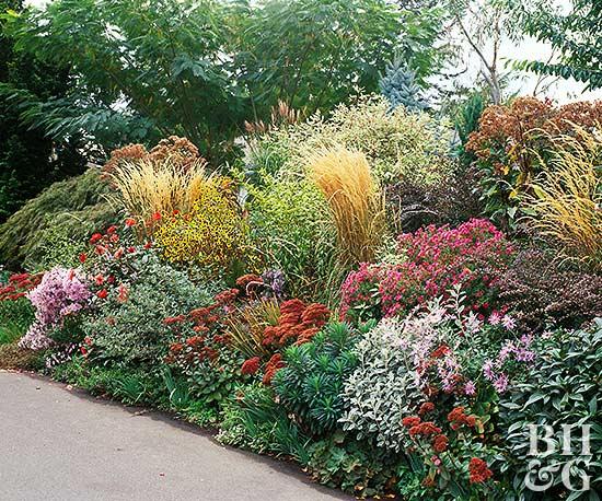 Low water garden plan for Low water garden design