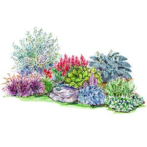 bold woodland garden plan - Flower Garden Ideas For Shade