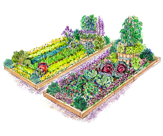 Colorful vegetable garden plan for Bhg garden plans