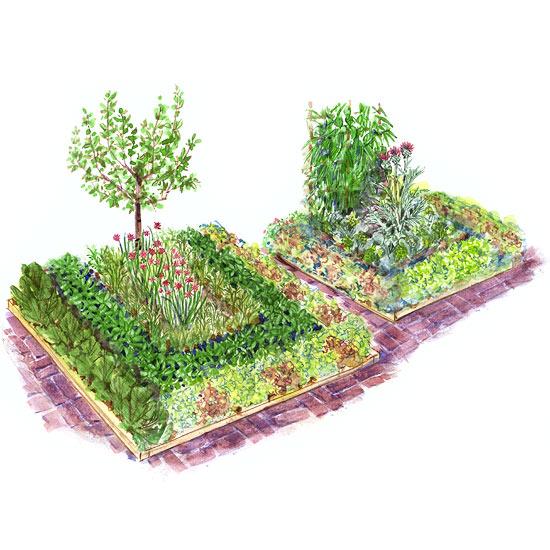 Patio Vegetable Garden Plan