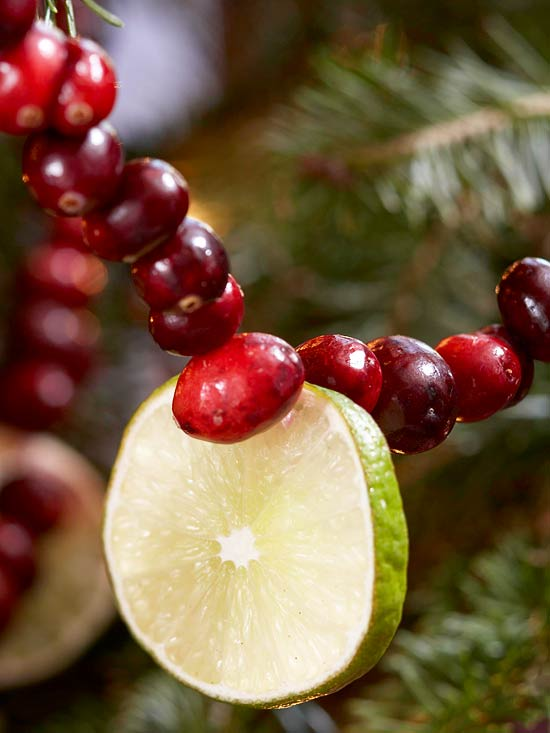 Christmas Garland Made with Fresh Cranberries and Limes