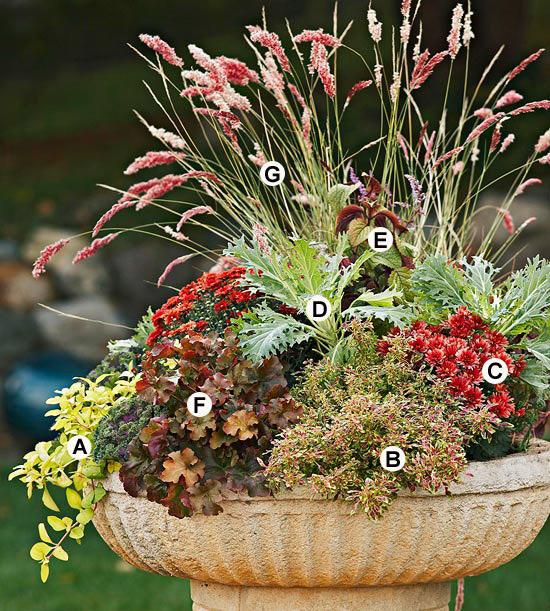 Natura Wohndesign: Fall Container Garden Recipes