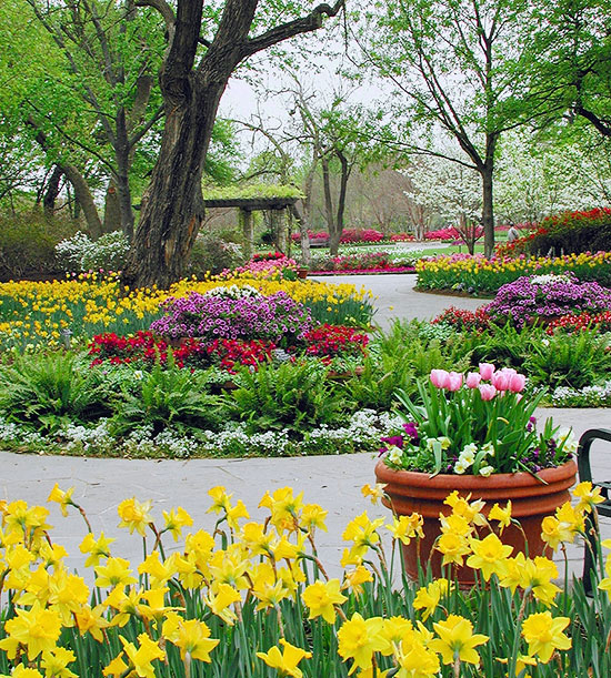 Landscaping ideas from the dallas arboretum for Garden design landscaping dallas tx