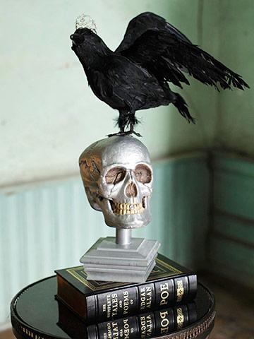 Still Life with Skull for Halloween