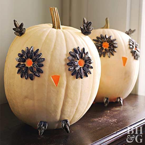 Easy Carved Owl Pumpkins for Halloween
