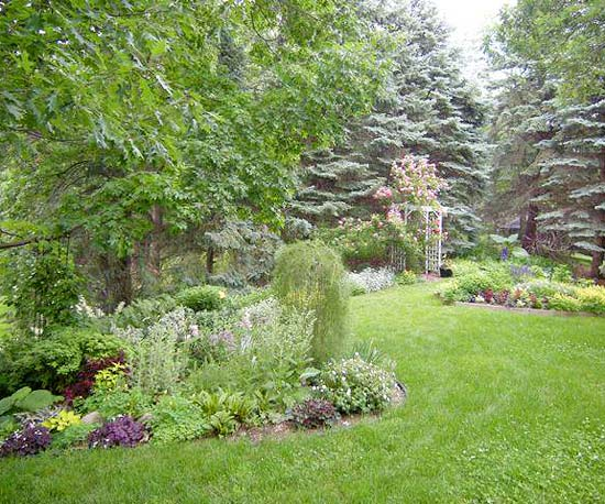 Design lessons from a minnesota shade garden for Landscaping large gardens