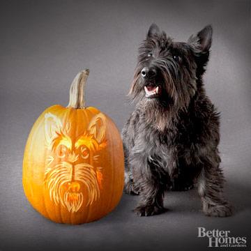 Scottish Terrier Pumpkin Stencil