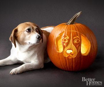 Beagle Pumpkin Stencil