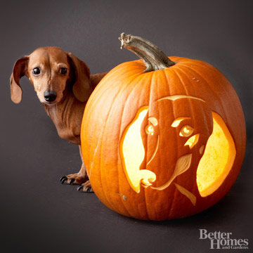 Free Pumpkin Carving Stencils Of Favorite Dog Breeds