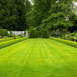 Genial September Gardening Tips For The South