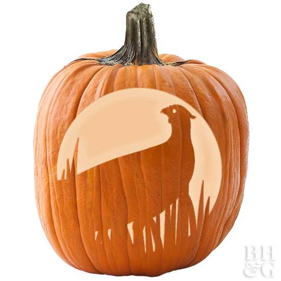 Pheasant Pumpkin Stencil