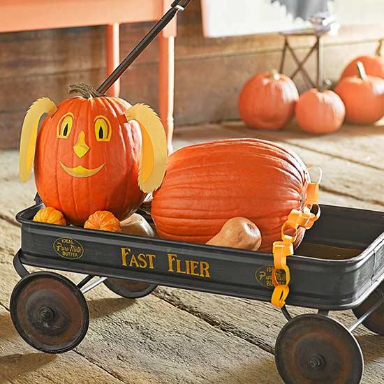 No-Carve Dog Pumpkin for Halloween