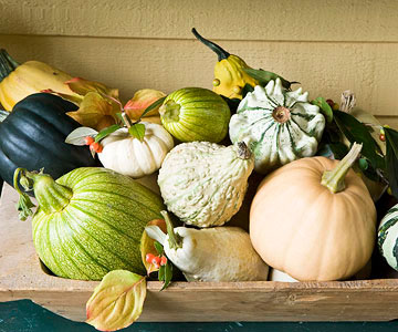 Simple Ideas For Decorating A Table With Gourds