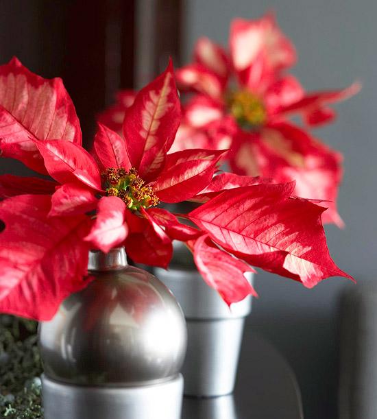 Pretty Christmas Flower Arrangements