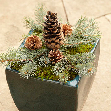 Make Your Own Woodsy Container