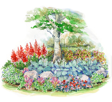 Small space shade garden plan for Shade garden design zone 4