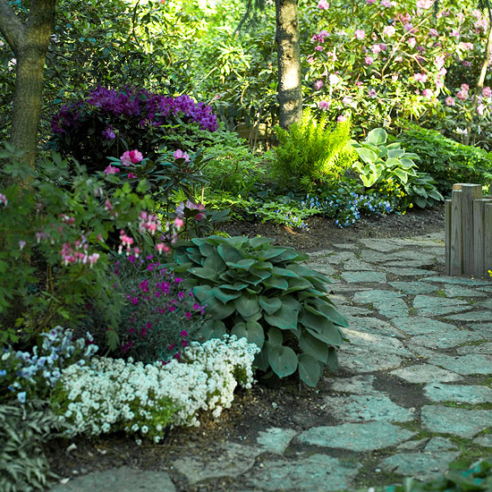 Best plants for landscape edging for Best plants for japanese garden