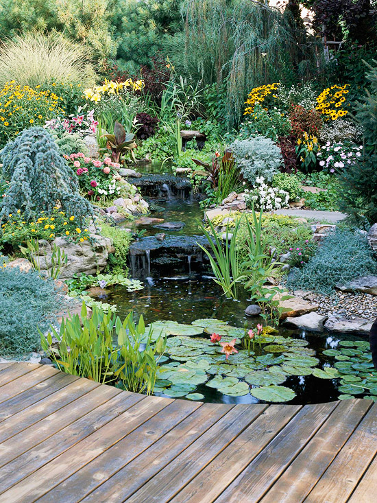 Water garden landscaping ideas for Idea for small garden landscape