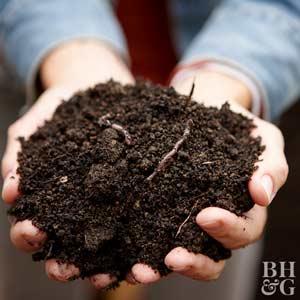Beau Compost, Dirt, Worms, Garden, Gardening. Topsoil ...