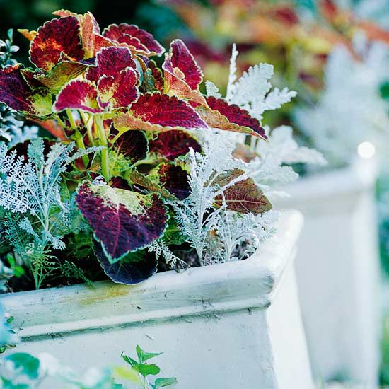Check Out These Spectacular Outdoor Planter Pots Deals on