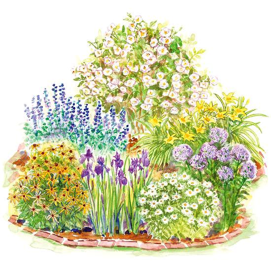 Easy-Care Romance Garden Plan