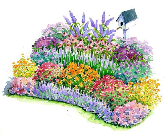No fuss bird and butterfly garden plan for Easy perennial garden plan