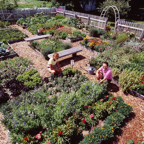 Growing a test garden for Garden design quiz