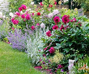 a cottage garden should express both joy and purpose the original cottage style landscape designs placed beautiful bloomers of varying heights right next - Garden Design Cottage Style