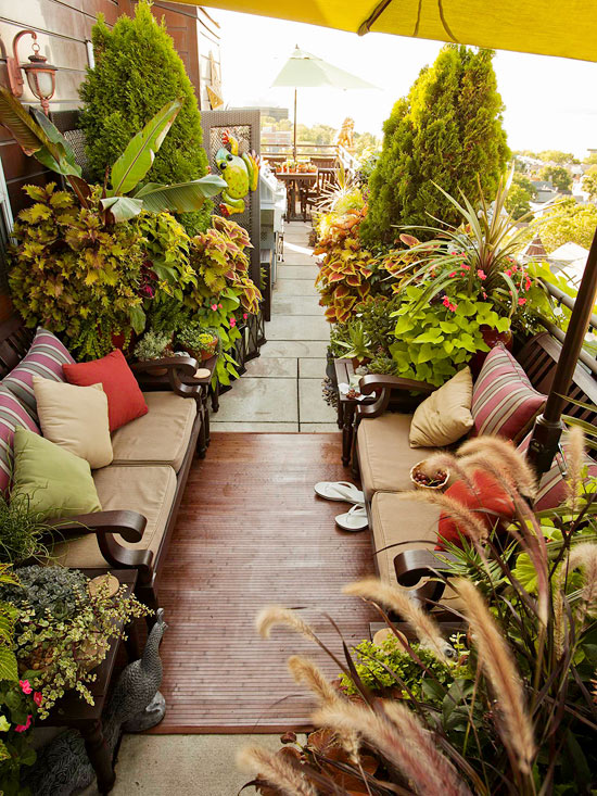 How To Garden In An Urban Setting