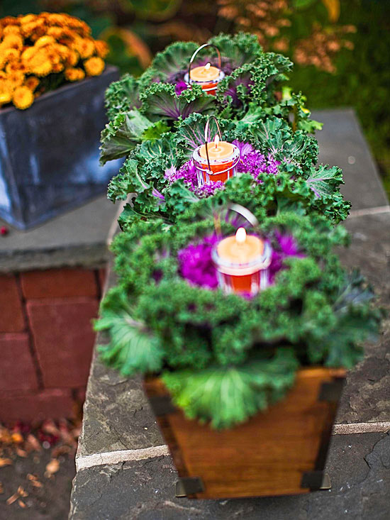Container gardening basics - Container gardening basics ...