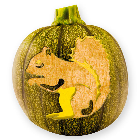Squirrel pumpkin stencil