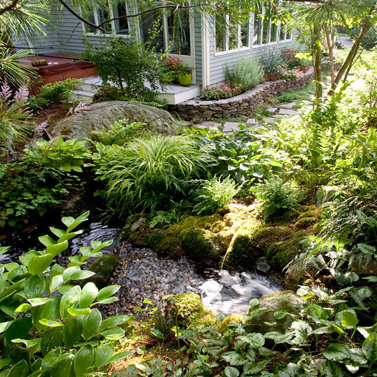 How to plant around a pond for Garden pond edging