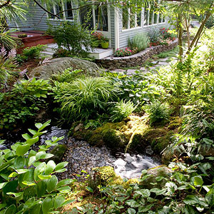 How to plant around a pond for Landscaping around koi pond