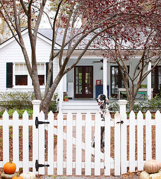 Picket Fence Ideas