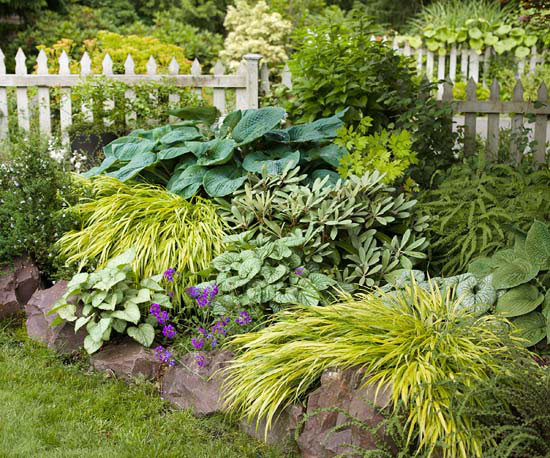 Landscaping Maintenance Tips