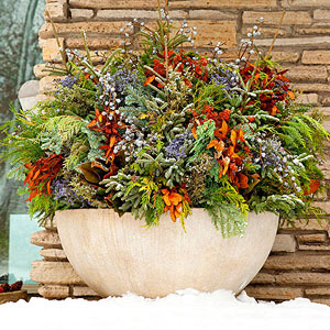 winter garden design. Use evergreen sprigs  colorful twigs and dried perennials to create a winter wonderland in your containers Begin by filling the container two thirds full 10 Winter Garden Delights