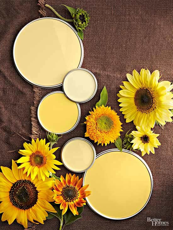 Sunflower Yellow Paint Colors