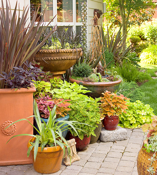 Container Garden Ideas: How To Group Container Gardens Together