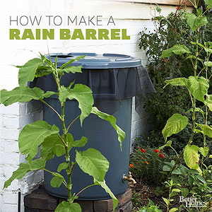 Make A Rain Barrel To Save Water