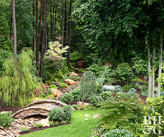 Shade garden ideas for Landscaping ideas for wooded areas