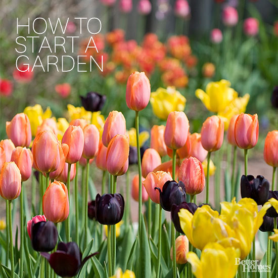 Genial Spring Is A Good Time To Begin Growing And Digging, Although Planning Can  Take Place Before The Snow Melts. Gardeners Spend Most Of The Summer  Watering, ...