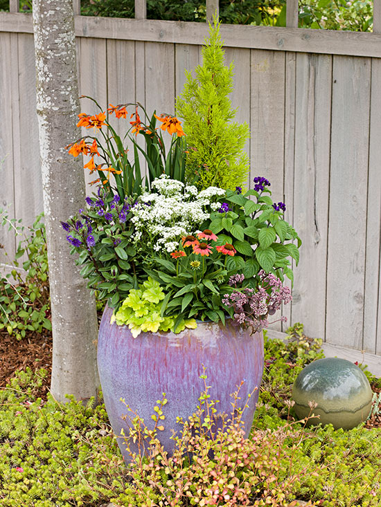 Gardener's Guide to Flower Planters