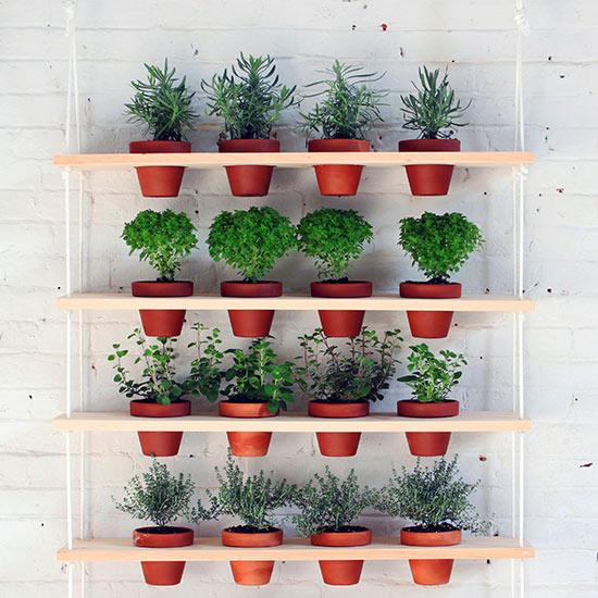 Garden Finance Vertical Garden Ideas