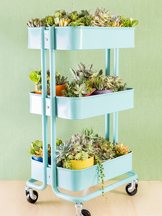 Indoor Gardening Ideas Part - 19: Rolling Cart Succulent Planter