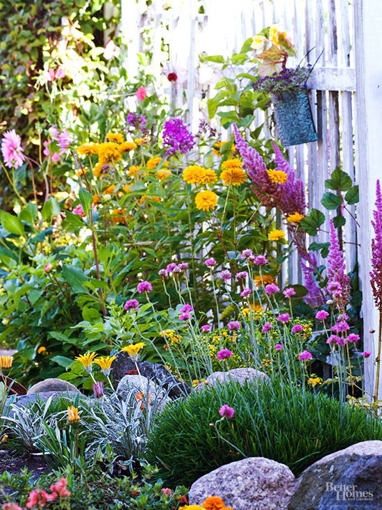 Perennial Plant Combinations