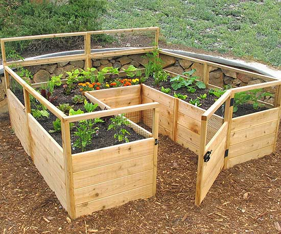Deer Proof Cedar Complete Raised Garden Bed Kit - 8