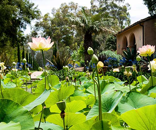 14 Gardens to Visit Before You Die