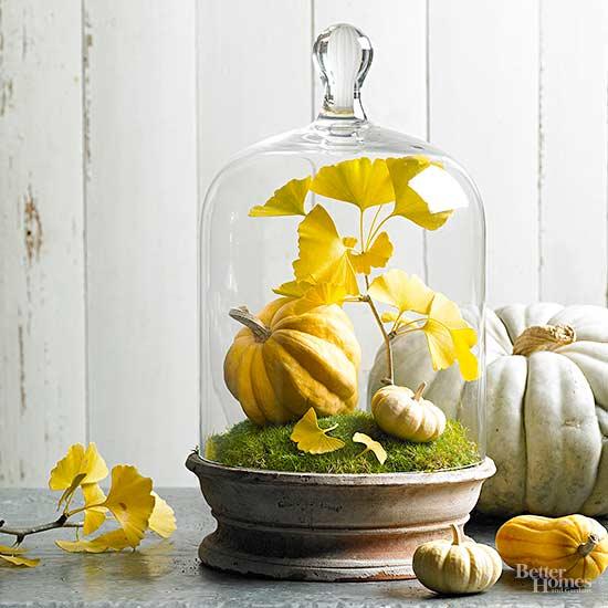 mini fall garden - Fall Decorating