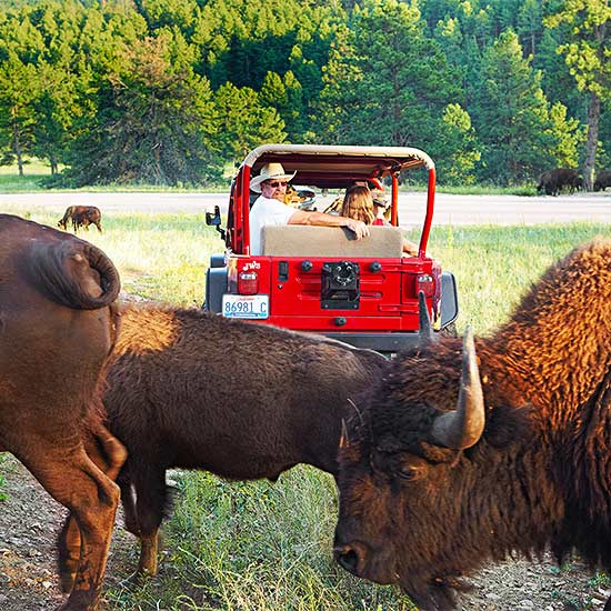 In Style: 5 State Parks You'll Love